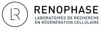 renophase